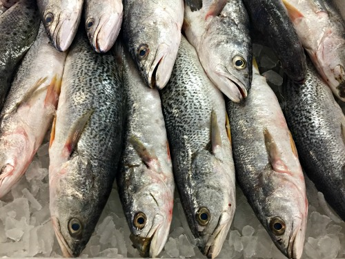 Fishtowne_Seafood_Beaufort_NC_500x375